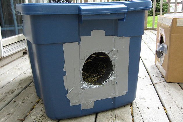 Face Low Cost Spay Neuter Clinicoutdoor Cat Shelters