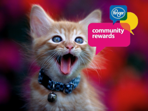 kittyrewards