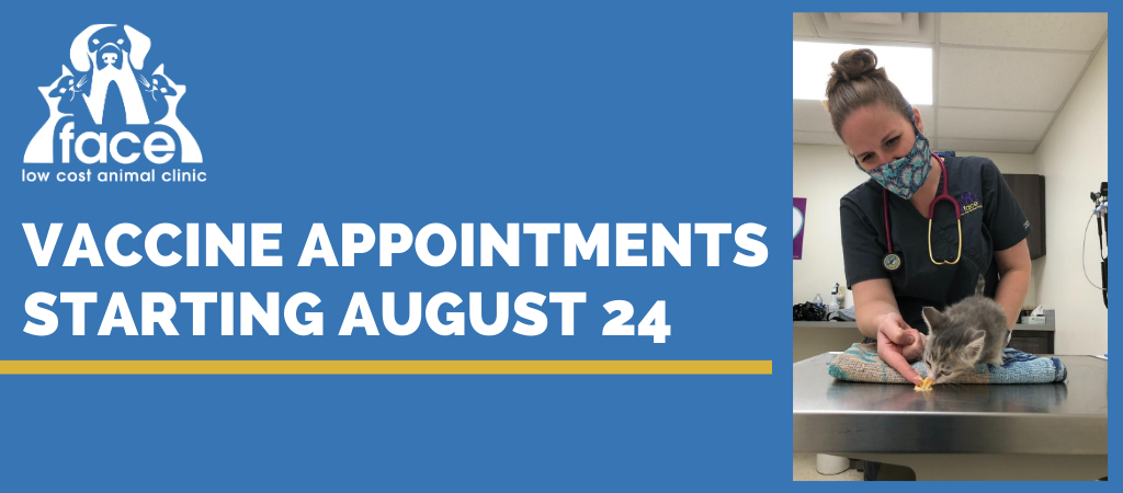 Schedule vaccine appointment