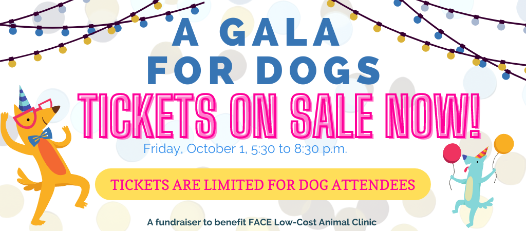 Gala for Dogs